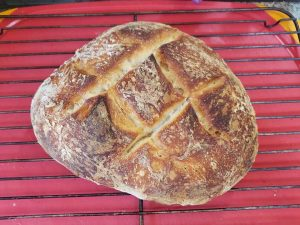 hand-made-sour-dough-bread-lauras-artisan-roll-picnic-lunch